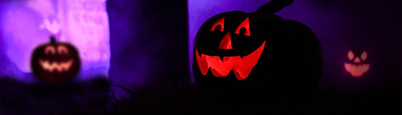 Pumpkin Shows
