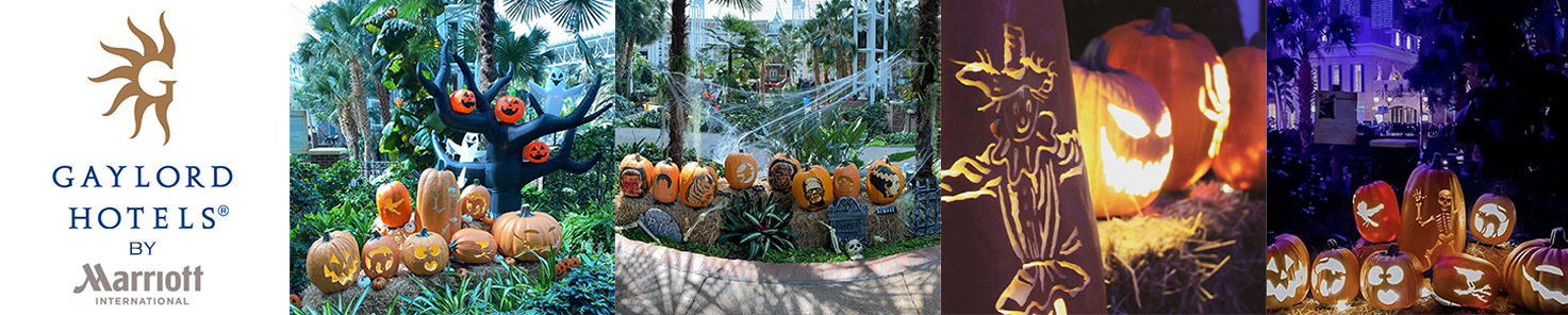 Jack O' Lantern Journey at Gaylor Hotels